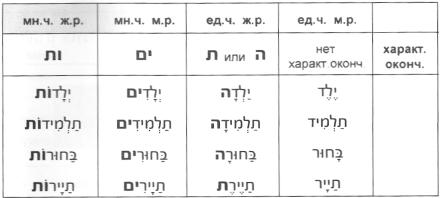 Род и число существительных и прилагательных